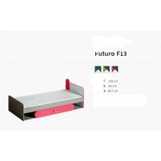 FUTURO F13